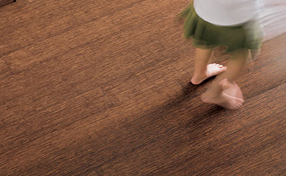 Teragren Bamboo Floor Strand Collection 3