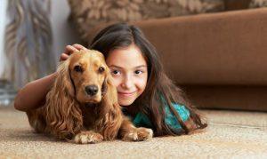 Residential Carpet Care